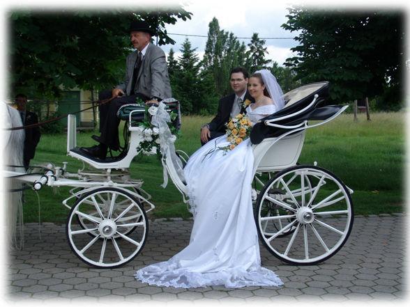 Beispiel: Mit der Kutsche zum Altar, Foto: Fiaker Wien.