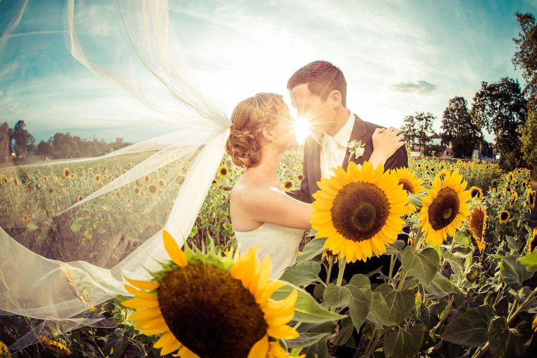 Hochzeit in Kitzingen