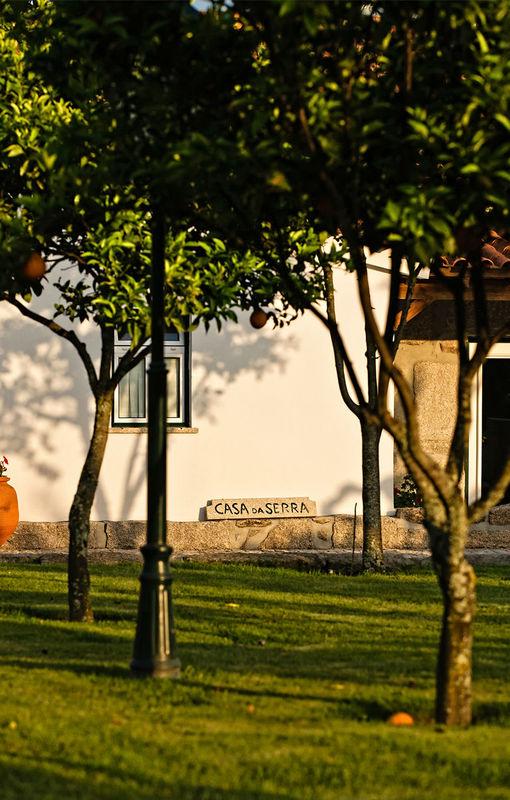 Foto: Quinta Thiagos