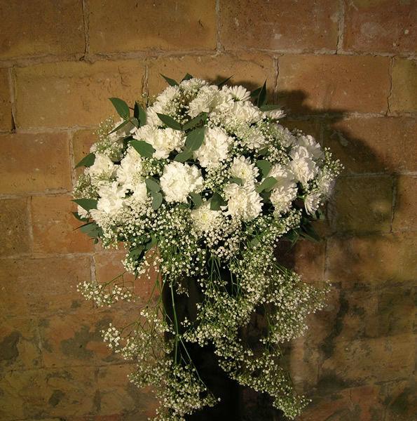A Fortuño Flors