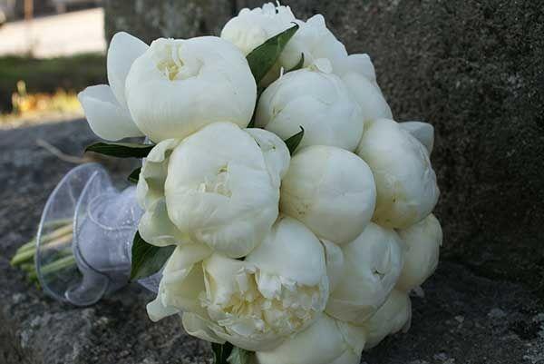 Florista Vilaflor