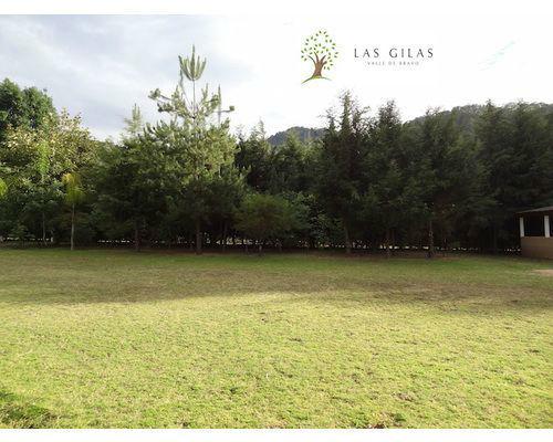 Las Gilas Valle