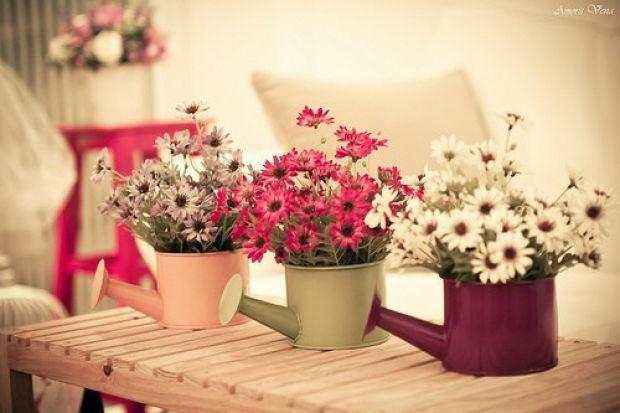 Flor Santa Assessoria e Decoração