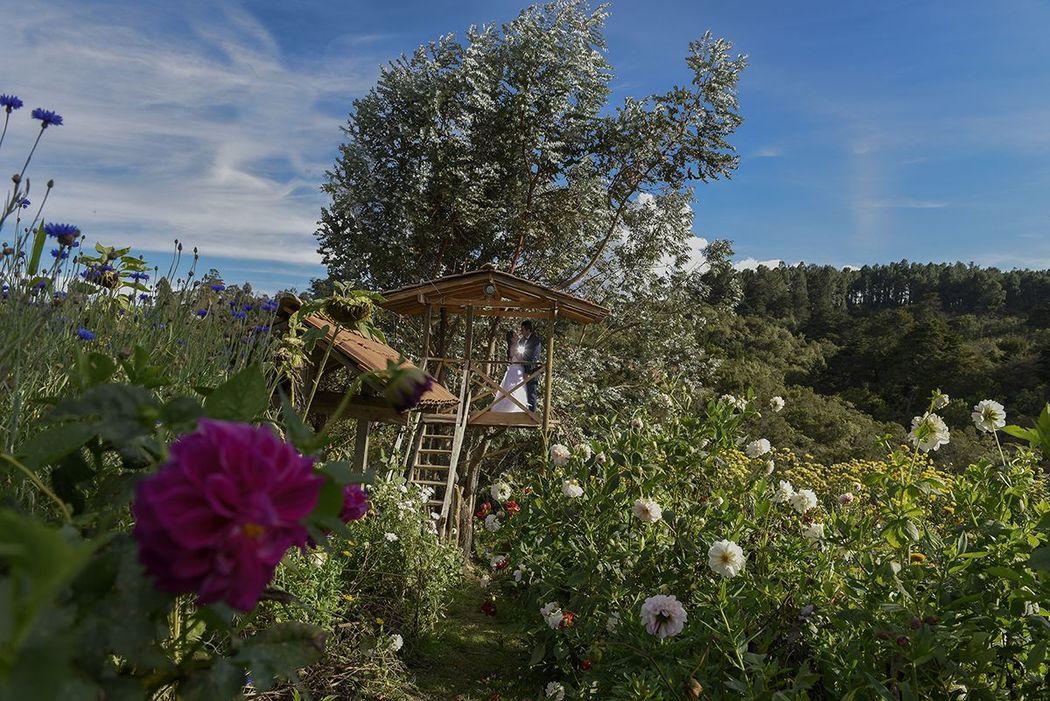 jardin fotos boda - fotografos en cartagena