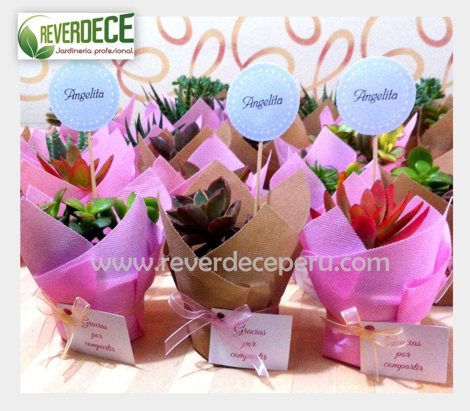 Recuerditos con envoltura de colores. Macetas de 6.00 cm. de altura con plantas variadas ideales para bodas.