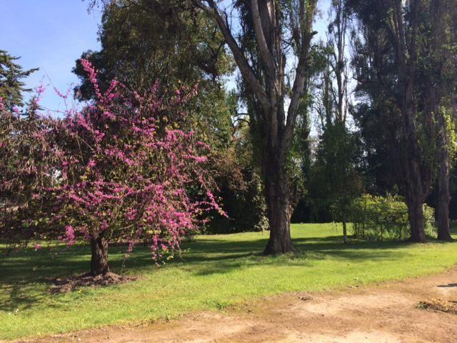 hermosos y amplios jardines