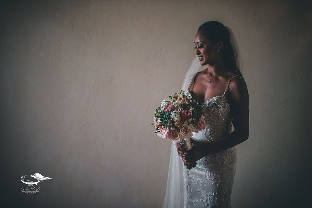 Carlos Plazola Wedding Photography and Cinematography