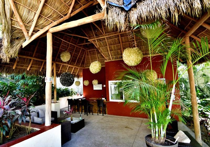 The Phoenix Sayulita