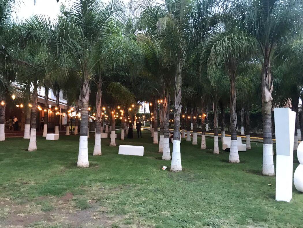 Terraza San Nicolás