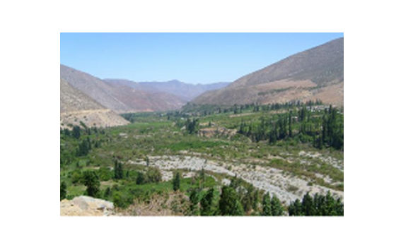 Cabañas Río Mostazal