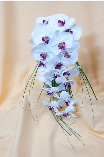 Pando Floristas