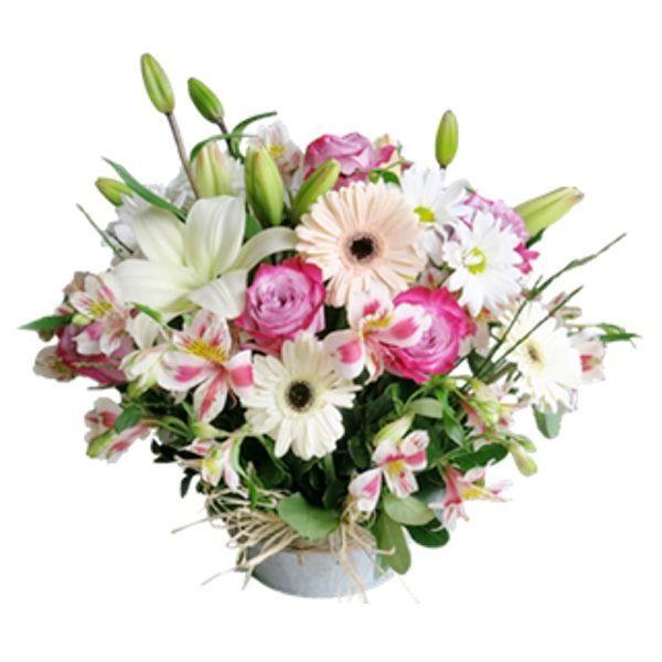 ABC Flores