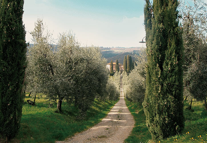 Agriturismo Castel d'Acone