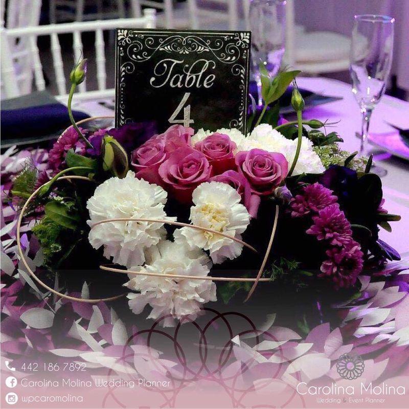 Carolina Molina Wedding Planner