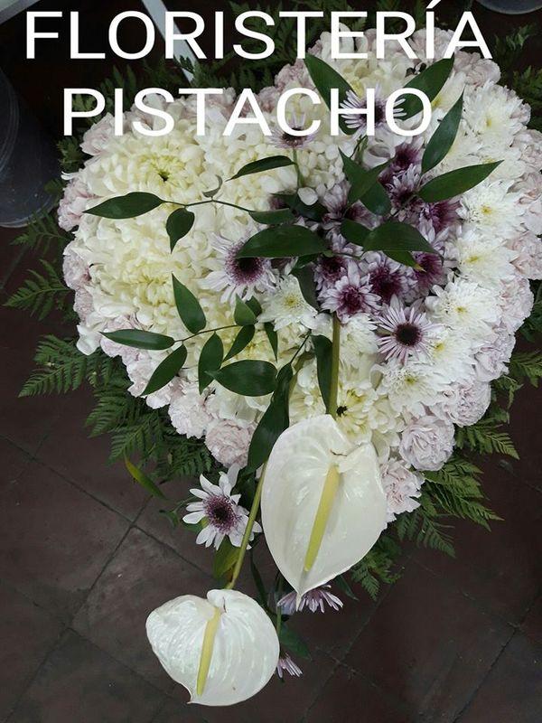 Floristería Pistacho