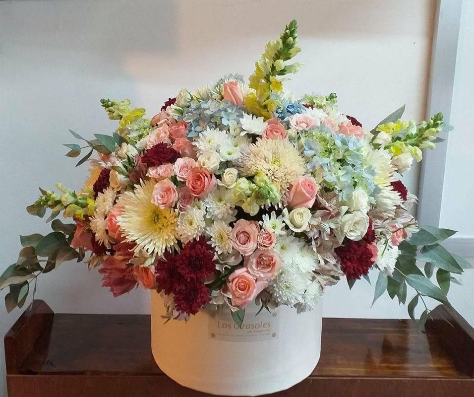 Florería Los Girasoles Xalapa