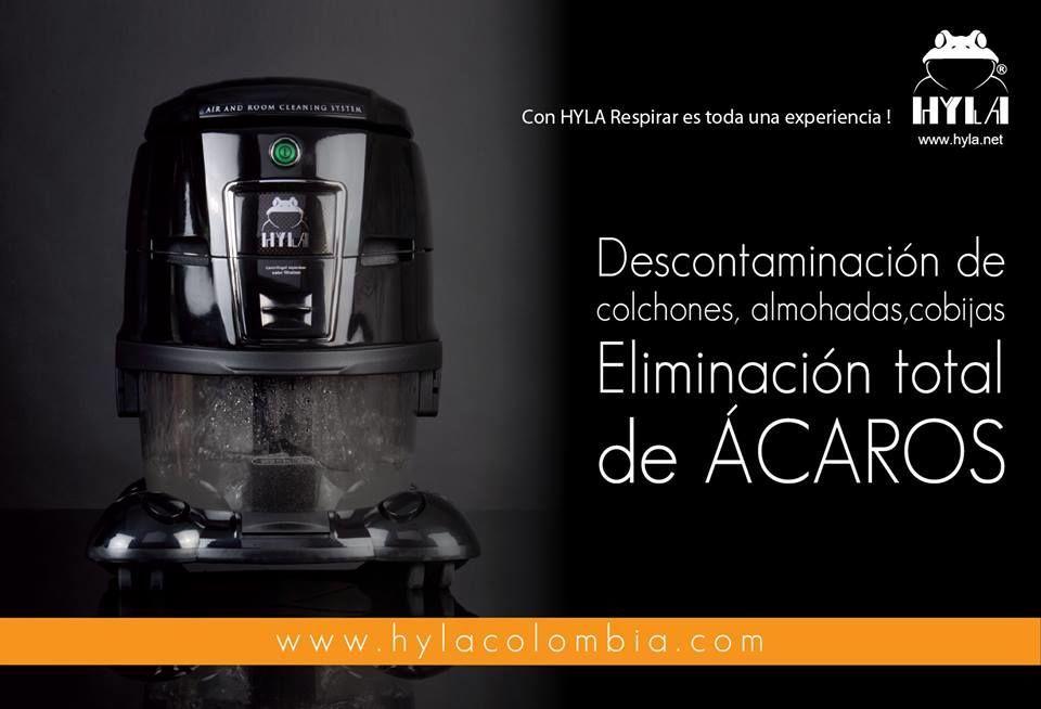 Hyla Colombia - Hogar