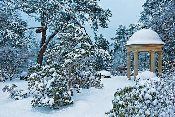 Beispiel: Pavillon im Winter, Foto: Travel Charme Strandidyll Heringsdorf.