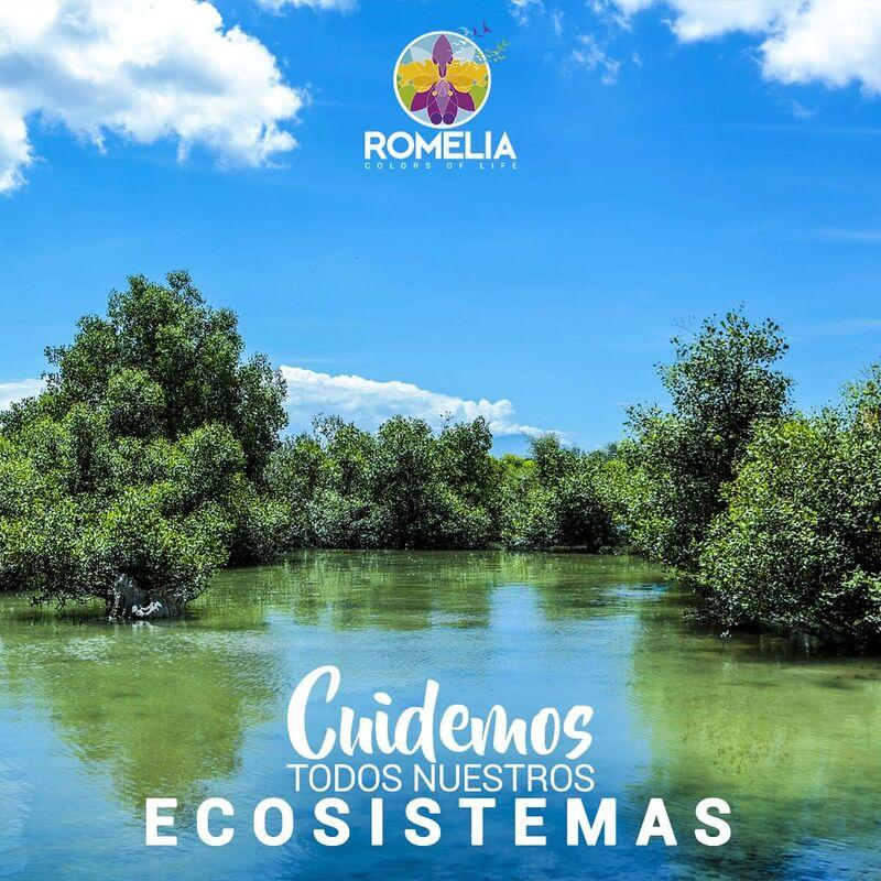 Finca Romelia Orchids & Birds