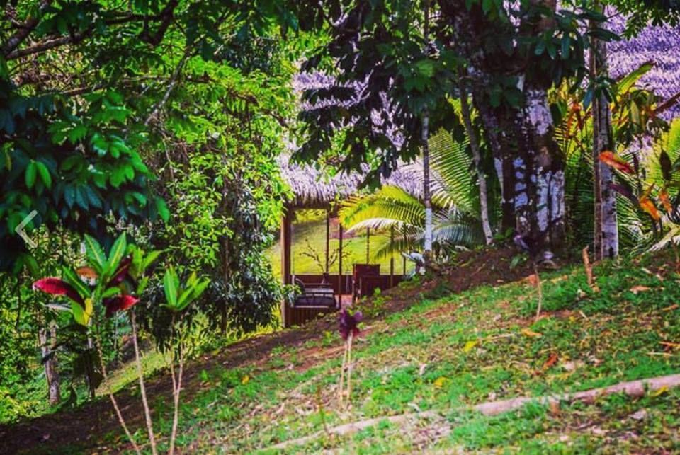 Lakshmi Ecolodge and Holistic Spa
