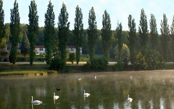Domaine de l'Auberge du Lac