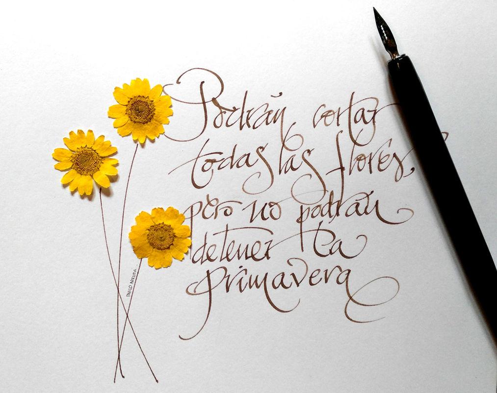 Frase Neruda