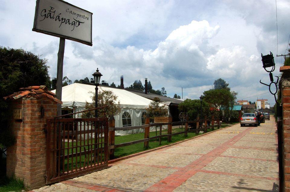 El Galápago Campestre