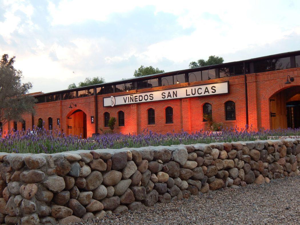 Viñedos San Lucas, San Miguel de Allende