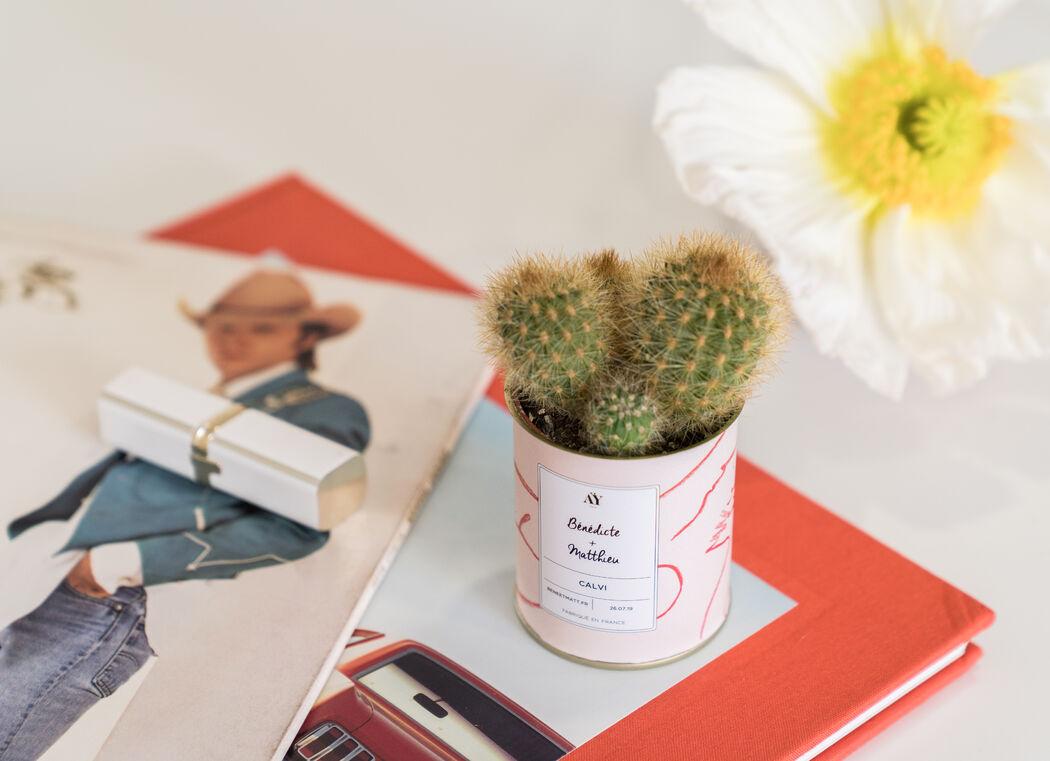 AŸ Cactus