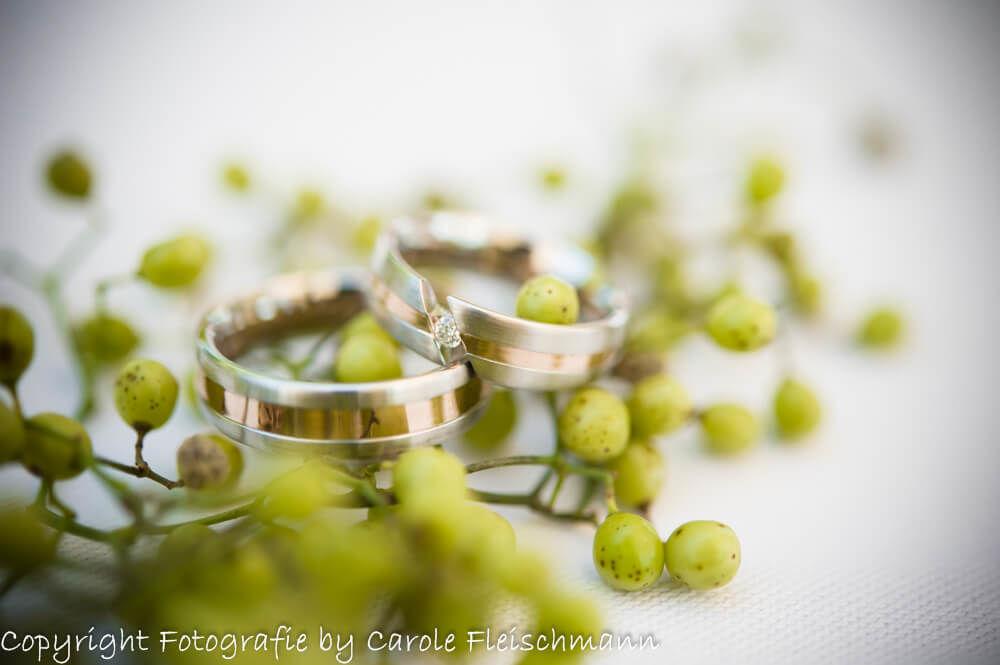Beispiel:Trauringe auf sattem grün,Foto:Carole Fleischmann Fotografie