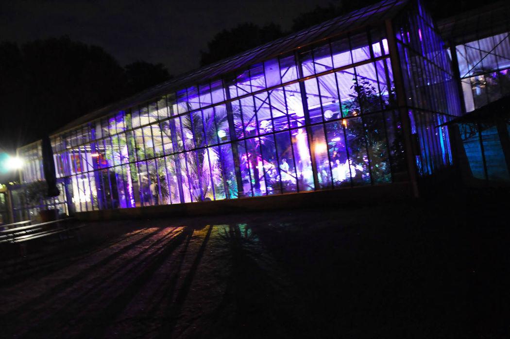 Hochzeits & Party DJ René Schmidt