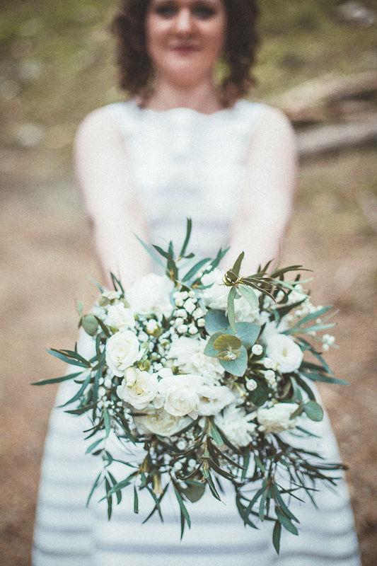 Kwiaty Bawełny