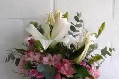 Golondrinas y Flores