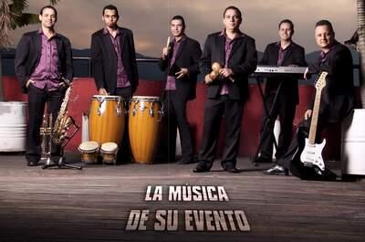 Grupo Magia Musical