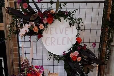 Velvet Green Rentals