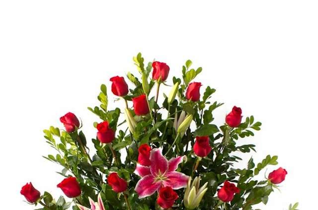 Florería Lotus