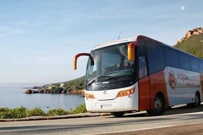 Viaja en Minibus