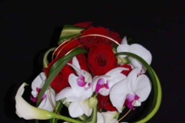 Flore Concept