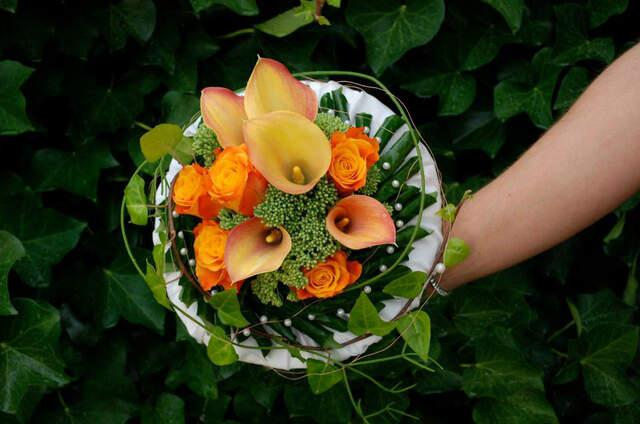 Blumen Becht
