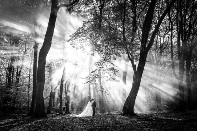 Jan van de Maat Fotografie