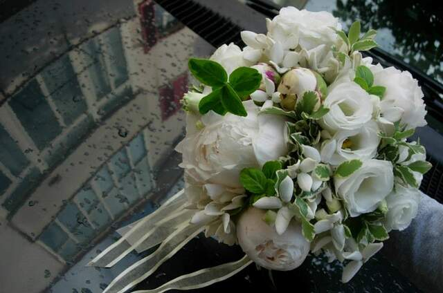 Cristiana Iannacone Flower Designer