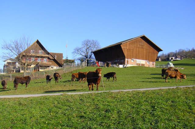 Hof-Landschi