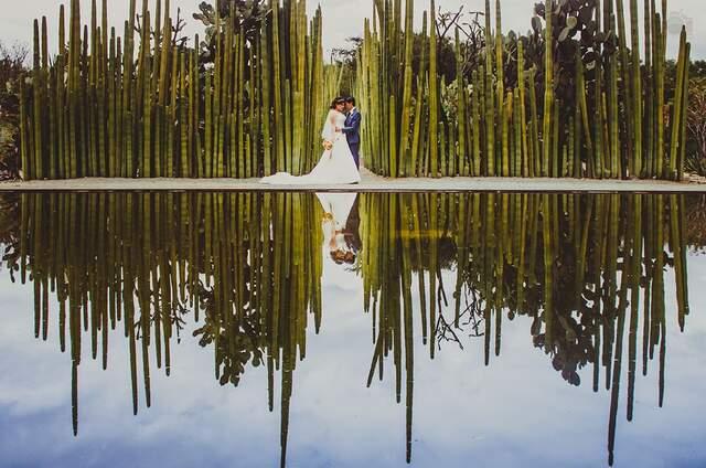 Frésapic Photography
