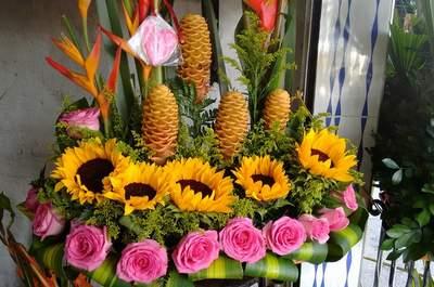 Flores Eden