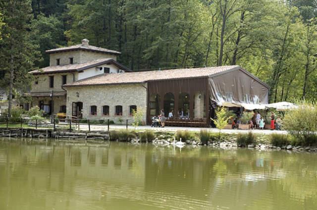 Parco Matildico di Montalto