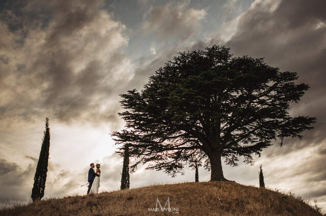 Marco Vegni Fotografia