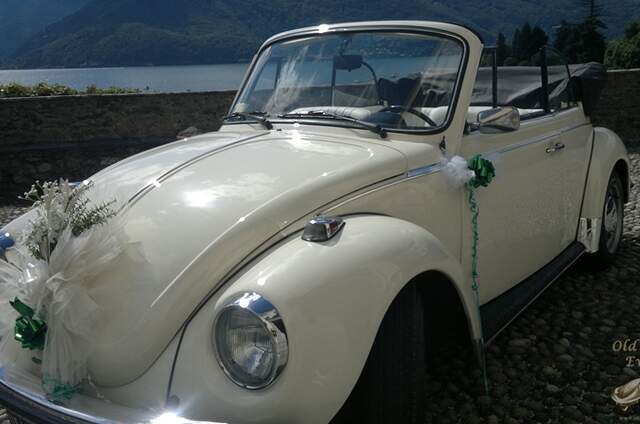 Old Beetle Eventi