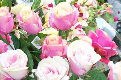 O Cantinho da Flor